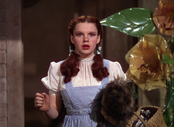 large_wizard_of_oz_blu-ray2x