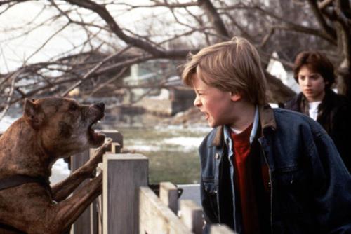 Macaulay Culkin è il disturbato Henry Evans che rivela il suo terrificante segreto allo sconvolto cugino, Elijah Wood, ne L'innocenza del Diavolo (1993)