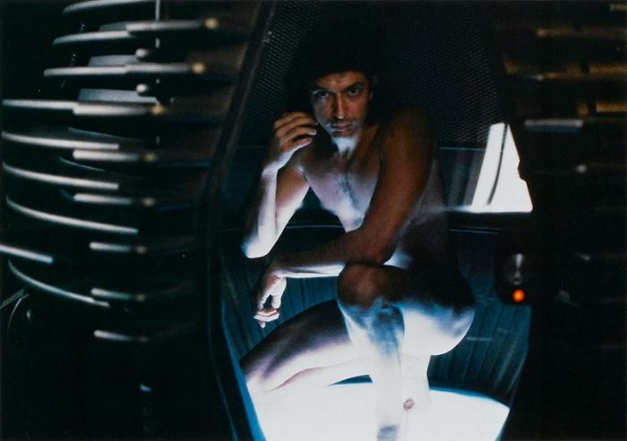 Jeff Goldblum è Seth Brundle alias La Mosca (1986): lo scienziato che costruisce una macchina per il teletrasporto ma, durante il procedimento, qualcosa va storto…
