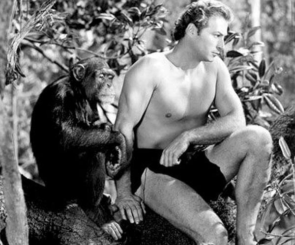 Cheetah è l'inseparabile scimpanzé amico di Tarzan l'uomo scimmia (1932)