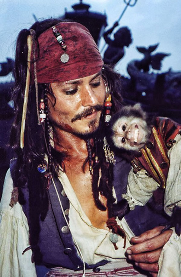 Jack è la scimmietta dispettosa di Sparrow in Pirati dei Caraibi