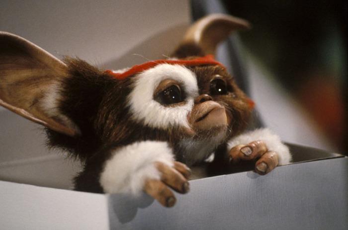 Inizialmente Gizmo sarebbe dovuto essere il cattivo del film, trasformandosi lui stetto in un Gremlin e diventando il leader del branco. Fu Steven Spielberg a decidere di modificare questo aspetto della trama, perché pensava che Gizmo fosse particolarmente tenero e il pubblico avrebbe voluto vederlo per tutta la durata del film.