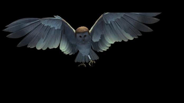 """1- Il barbagianni nei titoli di testa fu uno dei primi tentativi di CGI """"animale"""" nella storia del cinema, opera di Larry Yaeger e Bill Kroyer."""
