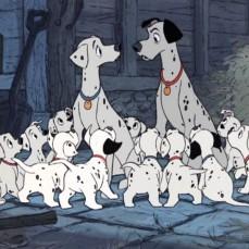"""3- Per risparmiare sul budget, gli Studios si avvalsero della tecnica della xerografia: un processo di fotocopiatura che permise di dimezzare i costi di produzione: fu fondamentale per l'animazione dei centinaia di cani maculati. Il nuovo processo Xerox fu testato sul corto Golia II (1960). Tuttavia, la tecnica conferì un design """"ruvido"""" al film e questo scatenò la furia di Walt Disney che non perdonò l'animatore, Ken Anderson, fino alla sua morte nel 1966."""