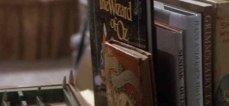 7- I realizzatori ammisero di essersi ispirati a Alice nel Paese delle Meraviglie e Il Mago di Oz.