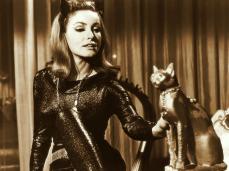 La sinuosa e bellissima, Julie Newmar, fu ingaggiata per il ruolo di Catwoman da un produttore che la notò al college di New York mentre la ragazza era in visita da suo fratello. Eartha Kitt la sostituì nella stagione finale, perché impegnata sul set de L'oro di Mackenna (1969).