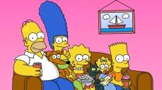 I Simpson (1989-)