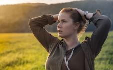 Il fantascientifico Arrival segue La La Land con 8 nomination (insieme a Moonlight), tra cui quella per miglior film e regia Denis Villeneuve, ma lascia a secco la sua straordinaria protagonista Amy Adams.