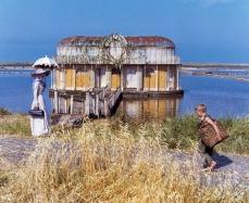 La casetta della Fata Turchina, quella sulle palafitte e con il pontile di legno, è stata costruita per le riprese del film, sia sulle rive del lago di Martignano (quando Pinocchio cerca di fuggire dagli assassini), sia alle saline di Tarquinia (più avanti nello sceneggiato, quando Pinocchio ritrova la fata e lo porta a casa sua).