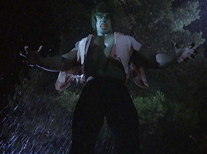 Incredible-Hulk-TV-Ferrigno-Bixby-h8