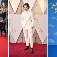 Timothée Chalamet, un look da Beautiful Boy