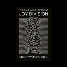 Unknown Pleasures (1979), Joy Division