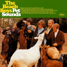Pet Sounds (1966), The Beach Boys