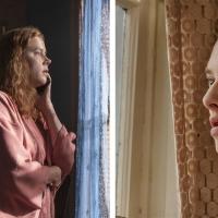 «La donna alla finestra» e «L'apparenza delle cose», le storie vere dietro ai thriller del momento targati Netflix